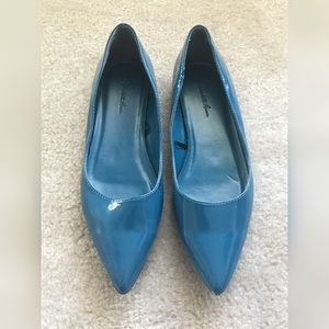 Blue pointed toe flats.